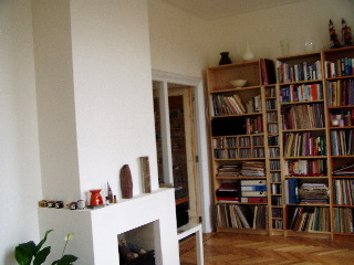 Book cases in the living room